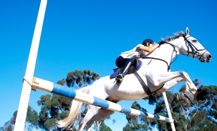 One, Three, or Five 60-Minute Horseback-Riding Lessons from Elite Stables (65% Off)