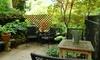 Trenton Mill Hill Garden Tour - Trenton: Urban-Garden Tour for Two or Four from Mill Hill Garden Tour (Up to 55% Off)