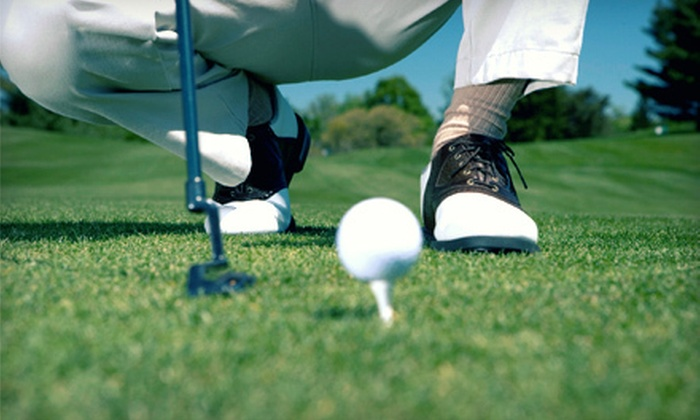 The Range - Highland Hills: 5 or 10 Baskets of Range Balls, or One-Hour Golf Lesson with 1 Basket of Range Balls at The Range (Up to 51% Off)