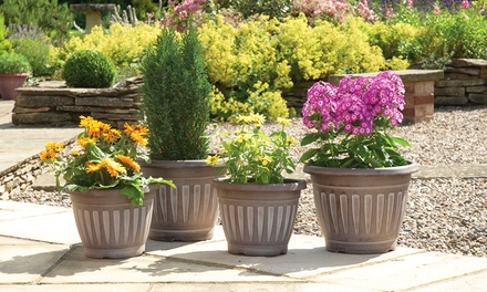 4 georgian style garden planters groupon goods for Gardening 4 less groupon