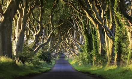 Belfast: 2 Nights at a Choice of Hotels with Game of Thrones Film Locations Tour*