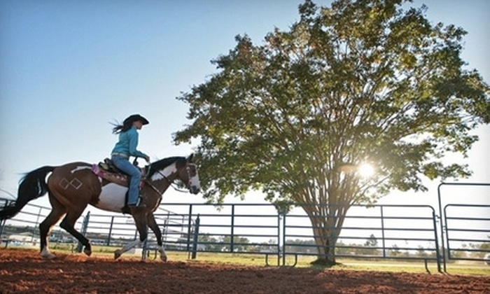 Circle B Ranch - Chester: 60-Minute Guided Horseback Trail Ride for Two or Four at Circle B Ranch in Chestertown (Up to 55% Off)