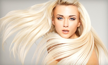 Haircut with Deep Conditioning, Single-Process Color, or Partial or Full Highlights at Silk the Salon (Up to 55% Off)
