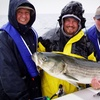 Rocky Point Fishing Charters—Up to 27% Off Charter or Cruise