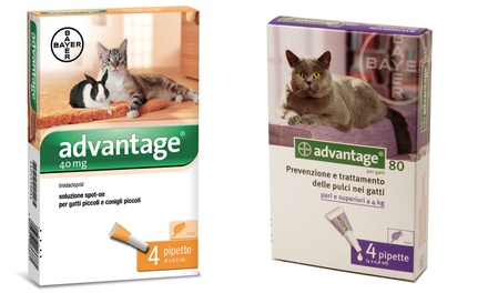 Antiparassitario per animali Bayer Advantage 40 o 80 e o Advantix spot on