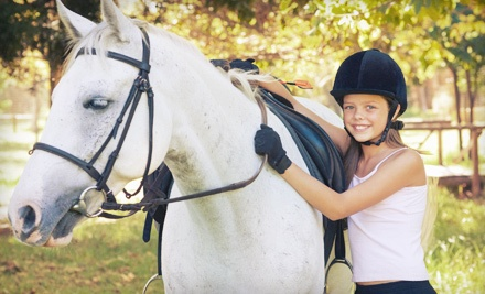 3 Horseback-Riding Lessons (a $90 value) - Red Hawk Farm in Newbury