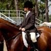 46% Off Horseback Riding