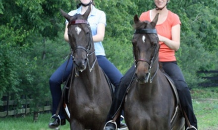 Two HorsebackRiding Lessons at Trotwood Farm (40% Off)