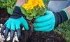 Garten-Handschue mit Grabkrallen