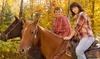 4 Horse Ranch - San Andreas: $33 for $60 Worth of Horseback Riding — 4 Horse Ranch