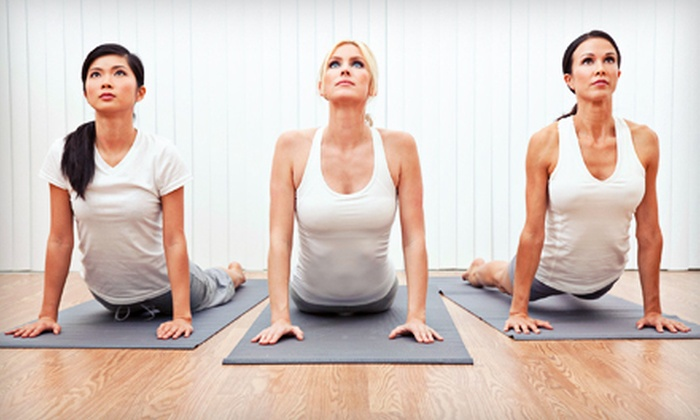 The Pilates and Yoga Center of Lake St. Louis - Lake Saint Louis: Pilates, Yoga, and BeyondBarre Classes at The Pilates and Yoga Center of Lake St. Louis (Up to 87% Off). Two Options Available.