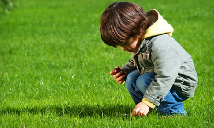 Lawn Doctor - Fairfield County: $29 for a Lawn Fertilization and Weed Treatment from Lawn Doctor ($61 Value). Three Franchises Available.