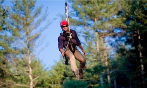 The Beanstalk Journey: Zipline Tour for Two at The Beanstalk Journey (57% Off)