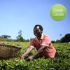 Kiva – Two $25 Credits to Fund Microloans