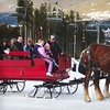 Up to 55% Off Sleigh Ride at Breckenridge Stables