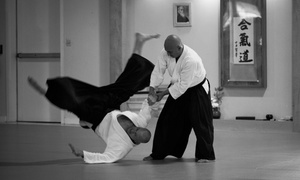 Wadokan Dojo/Tomball Aikido: Four or Six Private Aikido Classes or One Month of Kids' Classes at Wadokan Dojo/Tomball Aikido (Up to 72% Off)