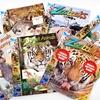 Zoobooks Animal-Anatomy Set