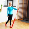 Sivan Health and Fitness Exercise Band Set with Door Anchor
