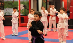 United Studios of Self Defense: Up to 88% Off 20 adult or kids martial arts at United Studios of Self Defense - Las Vegas