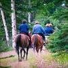 Up to 52% Off Horse Riding or Boarding