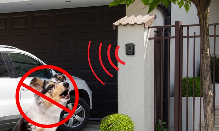 BDirect: $49 for an Ultrasonic Bark Control Device (Don't Pay $94.96)