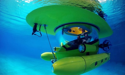 $179 for a One-Hour Drive-Your-Own Underwater