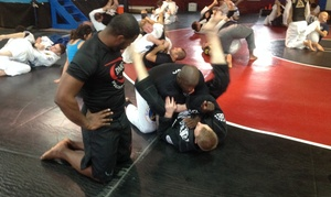 Dmg Mma & Boxing: Four Weeks of Unlimited Martial Arts Classes at DMG MMA & Boxing (50% Off)