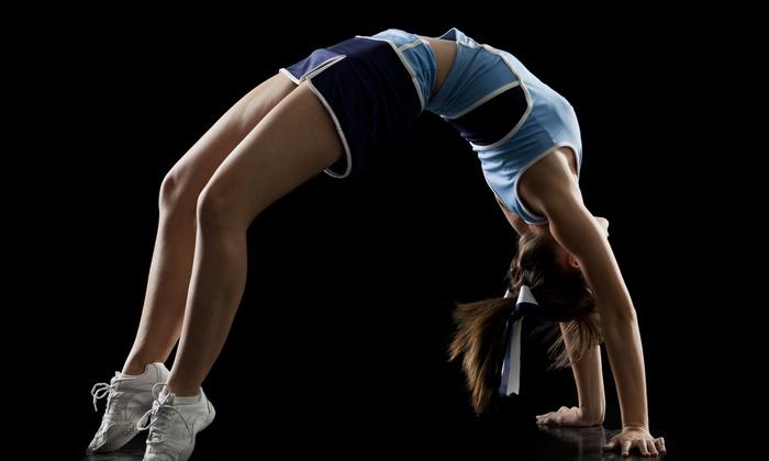 next level gymnastics academy - Rock Hill: $36 for $73 Worth of gymnastics at next level gymnastics academy