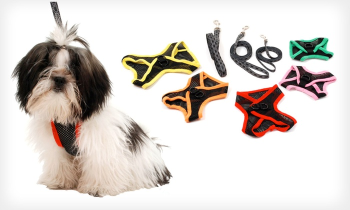 Airness Dog Harness and Leash: Emanuele Bianchi Airness Dog Harness and Leash (Half Off). Multiple Sizes and Colors Available. Free Returns.
