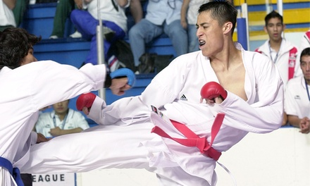 One, Two, or Three Months of Classes at Tibon's Goju-Ryu Fighting Arts (Up to 87% Off)