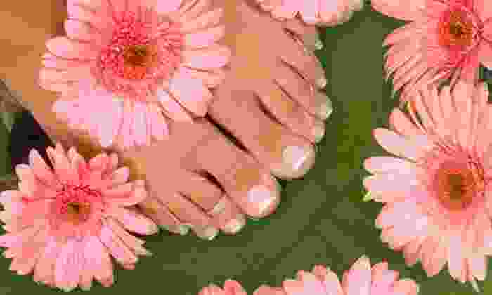Queen Jane Nail Salon - Multiple Locations: Basic Pedicure with Basic or Shellac Manicure at Queen Jane Nail Salon (Up to 73% Off)