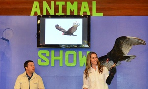 "The Akron Zoo presents ""It's a Wild World Animal Show"": The Akron Zoo Presents ""It's a Wild World Animal Show"" on February 21 at 2:30 p.m."
