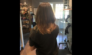 Alisha at the Ultimate Look: Up to 51% Off Hair cut and color at Alisha at the Ultimate Look