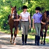Up to 67% Off Horseback Riding