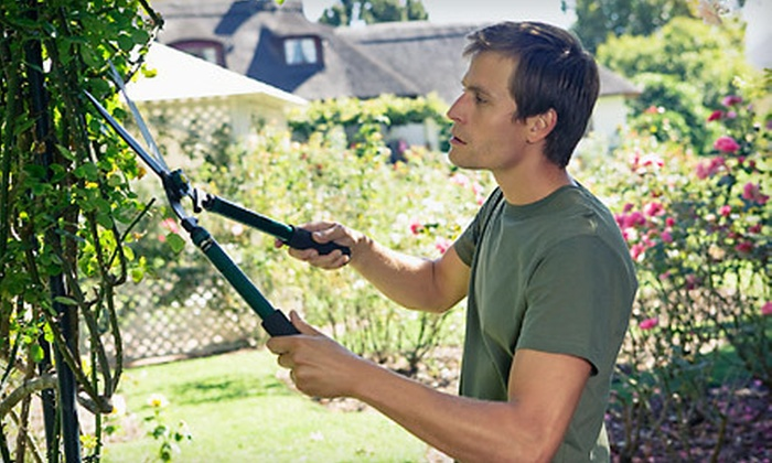 Lunchesrus Landscaping & Lawn Maintenance Service - Hamburg: $69 for Three Hours of Trimming and Pruning from Lunchesrus Landscaping & Lawn Maintenance Service ($150 Value)