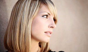 Textures Hair Studio: Haircut and Deep Conditioning with Optional All-Over Color or Full Highlights at Textures Hair Studio (71% Off)