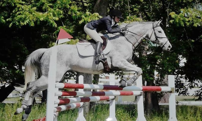 Pine Grove Equestrian Center - Mundelein: $69 for Three Private Horseback-Riding Lessons at Pine Grove Equestrian Center (Up to $150 Value)