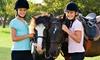 Balade à poney pour vos bambins