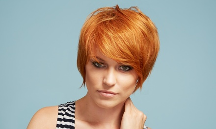 Haircut and Style, Highlights, or SingleProcess Color by Ashley at Moxie Salon (Up to 53% Off)