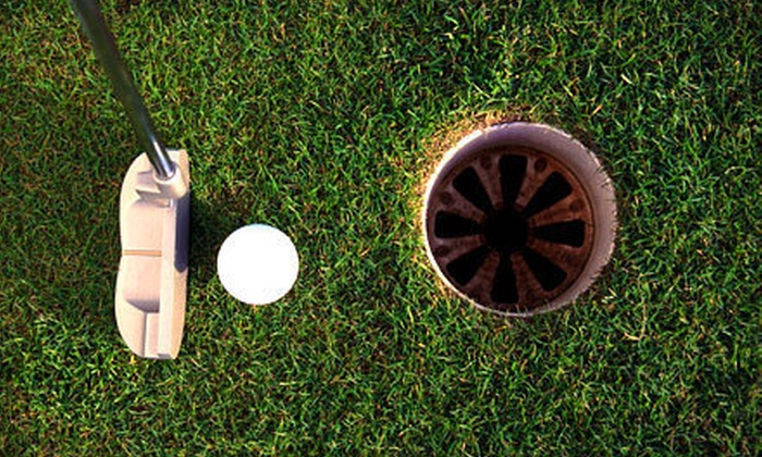 Ultimate Golf & Academy - Froehlich: Two Hours of Driving-Range Time for One or Two or Mini Golf for Two or Four at Ultimate Golf & Academy (Up to 56% Off)