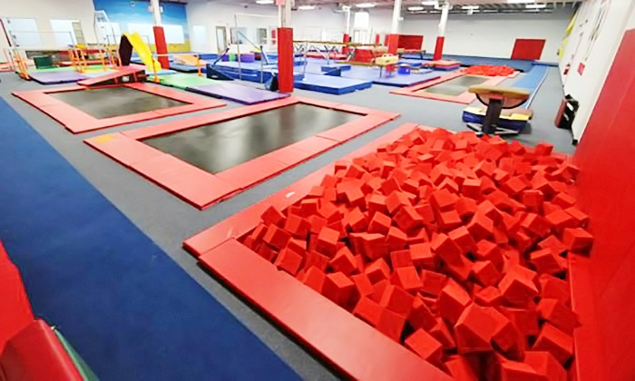 Gold Medal Gymnastics-Garden City - Garden City: Three- or Five-Day Kids' Summer Gymnastics Camp at Gold Medal Gymnastics - Garden City (50% Off)