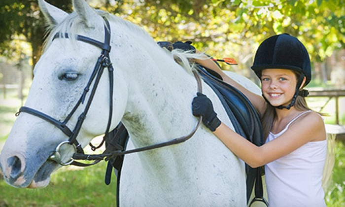 De Equus Stables - Manitowoc: $30 for Two 30-Minute Private Horseback-Riding Lessons at De Equus Stables (Up to $60 Value)