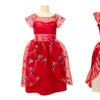 Elena of Avalor Adventure or Ball Gown