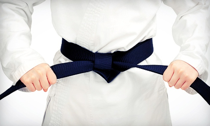 MMA PRO Center - Carrollton: $49.99 for 10 Brazilian Jiu-Jitsu Classes at MMA PRO Center ($200 Value)