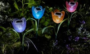 Lot de 4 tulipes LED solaires