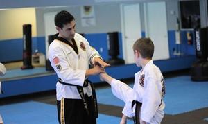 Reflex Taekwondo: $50 for $200 Groupon — Reflex Taekwondo