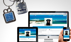 Pupsbox: $89 en vez de $180 por identificador Qr para perros en Pupsbox