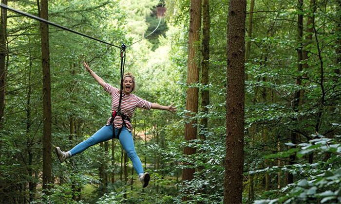 Go Ape - Allison Park: Treetop Adventure Admission for One Adult or One Child at Go Ape (Up to 16% Off)