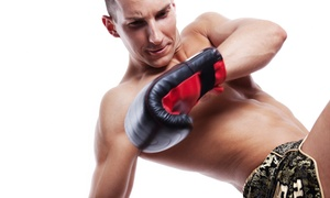 Perez Fighting Systems: 10 Boxing and Kickboxing Classes or One Month of Unlimited Classes at Perez Fighting Systems (Up to 56% Off)