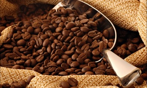 Octane Cafe: $11 for $20 Worth of Coffee — Octane Cafe
